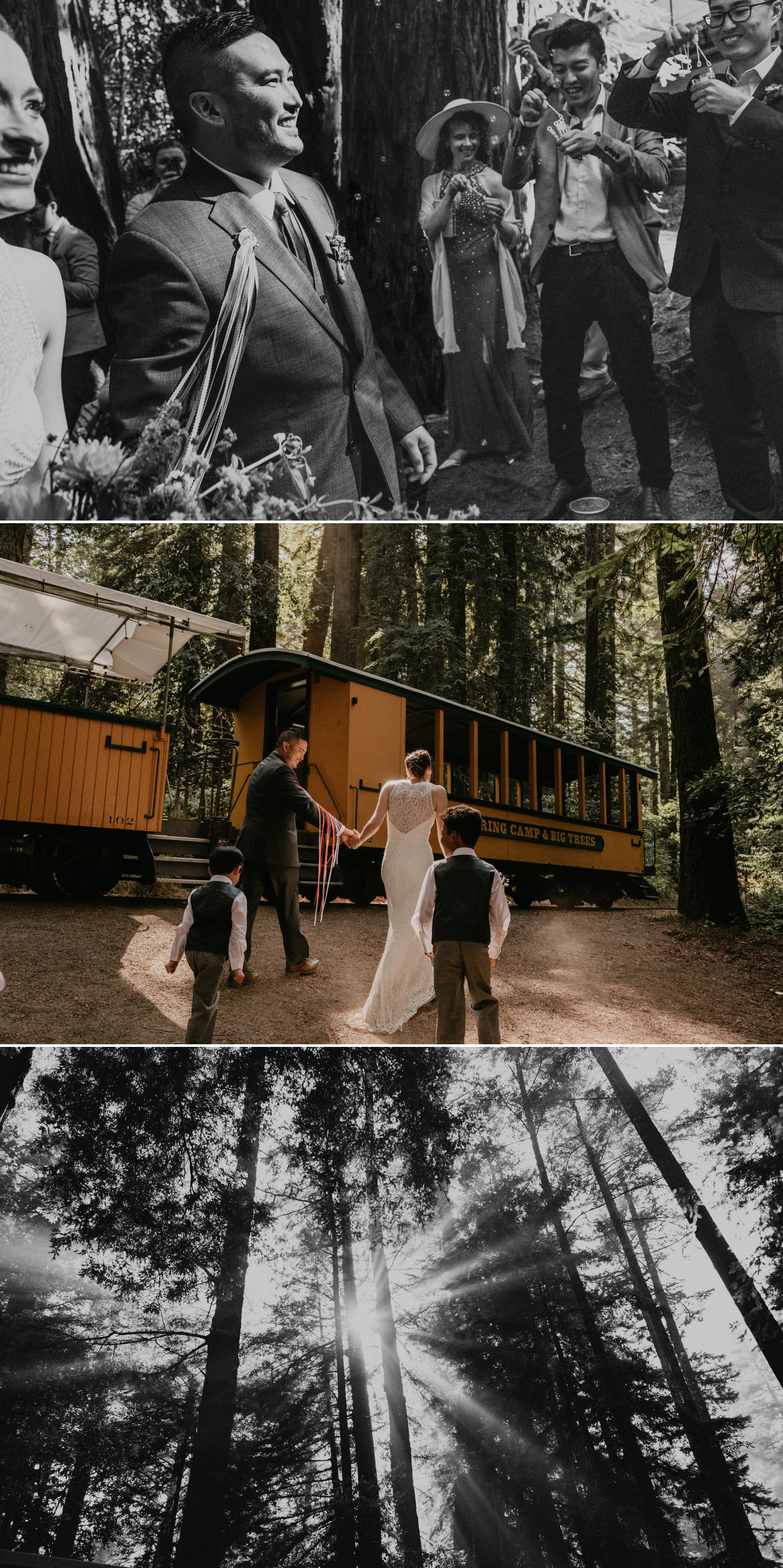 A celtic style Santa Cruz Redwoods wedding at Roaring Camp by Kadi Tobin, a Santa Cruz wedding Photographer