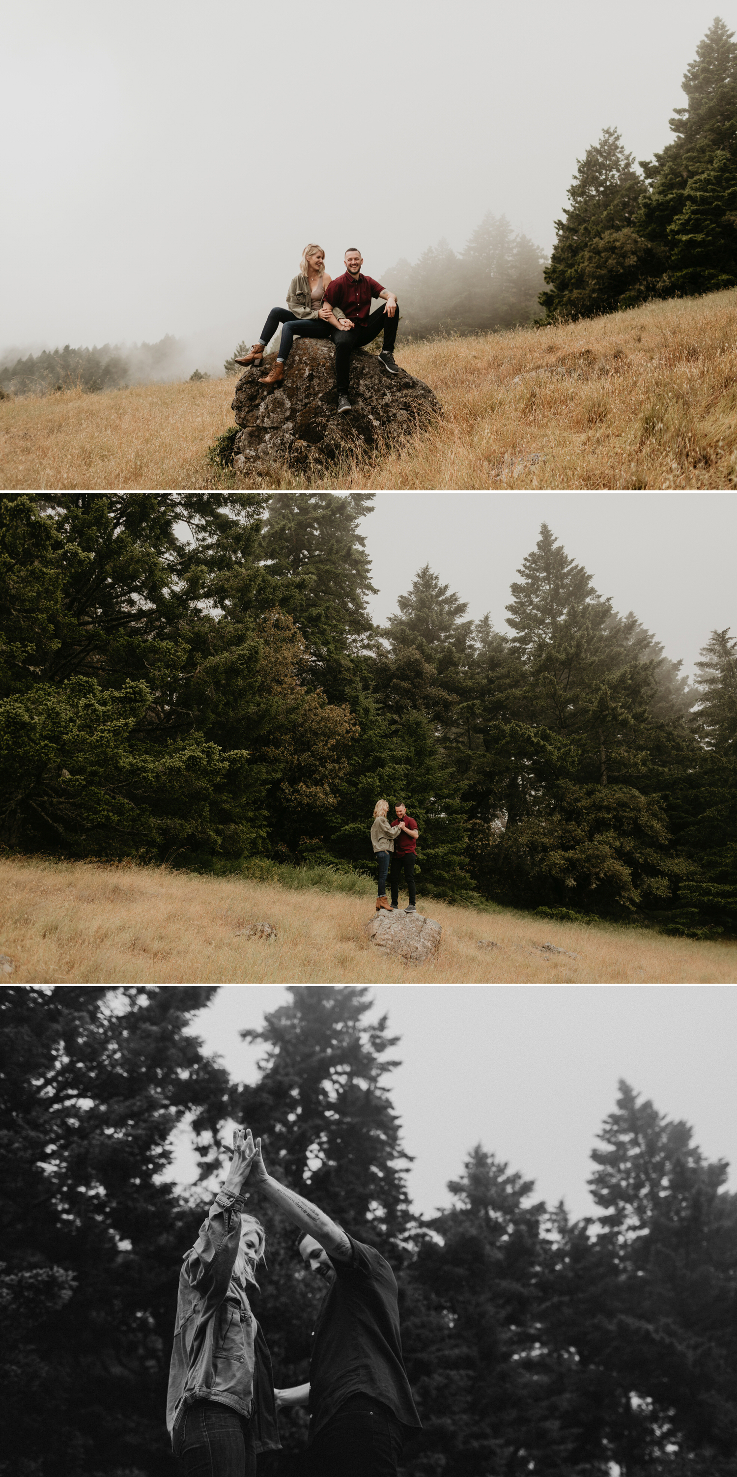 forest engagement in San Francisco